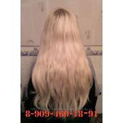 фото предложения ID 7369566