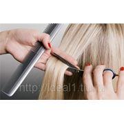 Женские стрижки волос, цены на женскую стрижку волос