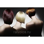 Тонирование краской средние волосы фото