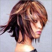 Колорирование сложное короткие волосы Теотема фото