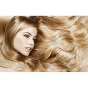 Биоламинирование волос - длина до 80 сантиметров фото