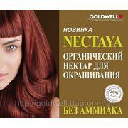 Nectaya Goldwell (нектарирование волос) фото