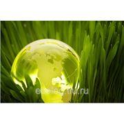 Программа производственного экологического контроля (ПЭК) фото