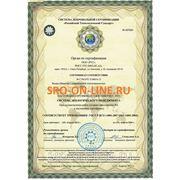 ГОСТ ISO 14001 2007 Сиситемы экологического менеджмента фото