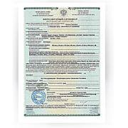 Фитосанитарный сертификат фото