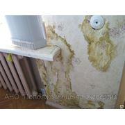 Оценка ущерба, причиненного недвижимости фото