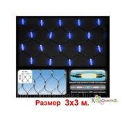 Елочные игрушки Россия Led сетка Две головы - 840 синих светодиодов, с контроллером, 3х3 м LEDN-2-B/840L фото