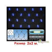 Елочные игрушки Россия Led сетка Две головы - 400 синих светодиодов, с контроллером, 2х2 м LEDN-2-B/400L фото