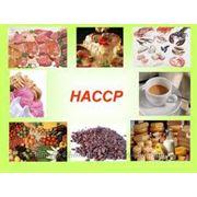 Консультации по разработке и внедрению HACCP фото