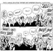 Консультации по формированию и ведению Реестра акционеров фото