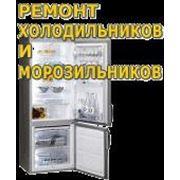 Срочный ремонт холодильников и морозильных камер всех марок на дому в г.Тольятти фото