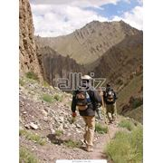 Страхование туристов фото