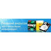 фото предложения ID 7388981