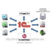 Интеграция 1С с сайтом другими системами