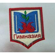 Шевроны на школьную форму под заказ фото