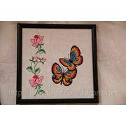 Картина бабочки фото