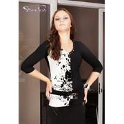 Блуза 1596 Чёрный цвет фото