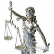 Экспертиза налоговых актов, решений, действий налоговых органов фото