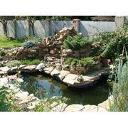 Строительство прудов и бассейнов фото