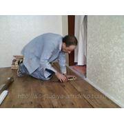 фото предложения ID 7430129