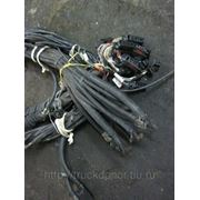 фото предложения ID 7433842