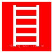 Знак пожарной безопасности F 03 — пожарная лестница фото