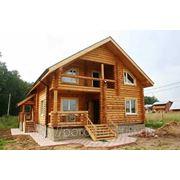 Дом из рубленного бревна (сосна) фото