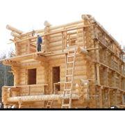 Срубы домов недорого фото