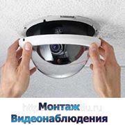 фото предложения ID 7446086