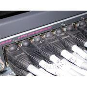 Монтаж компьютерных сетей от 750руб/порт фото