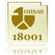 ИСО 18001:2007 Системы менеджмента охраны здоровья и безопасности персонала