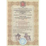 Оформить допуск в СРО НП СтройИзыскания СРО-И-033-16032012 фото