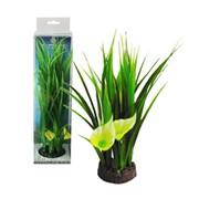 Пластиковые растения в блистере. фото