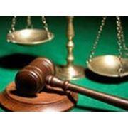 Представительство в суде и др. органах
