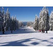 Зимний отдых в Кисловодске фото
