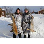 Стоимость обслуживания (сопровождение егерей транспорт на охоте лицензии) на одного охотника в день охоты. фото