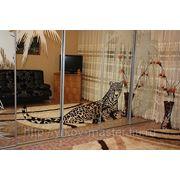 Пескоструйная обработка стекла и зеркало фото