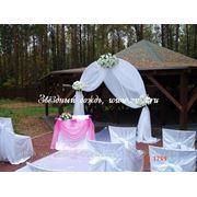 Свадебная арка для выездной регистрации фото