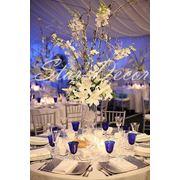 Комплексное оформление свадебного зала, свадебные чехлы на стулья, свадебная арка прокат фото