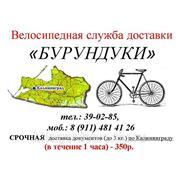 """Велосипедная экспресс-доставка """"Бурундукаи"""""""