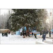 КРЕМЛЁВСКАЯ ЁЛКА 17 ДЕКАБРЯ 2012 Г. ОРГАНИЗАЦИЯ ПИТАНИЯ фото