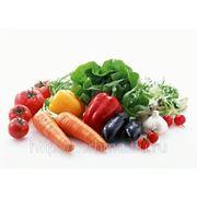 Салат зелений по селянськi — Салат из свежих овощей фото