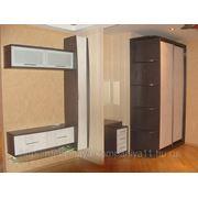 Кухни шкафы-купе, стенки! фото
