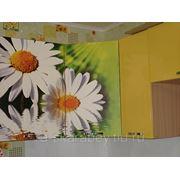 Кухонный фасад с рисунком, фотопечать на ЛДСП, МДФ фото
