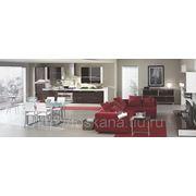 Кухня «ADRIATICA шпон венге + акрил шоколад» фото
