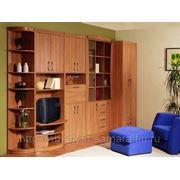 Кухни, шкафы-купе, спальни, детские и т. д. фото