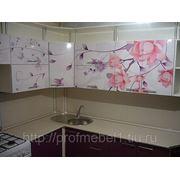 Кухня ветка сакуры