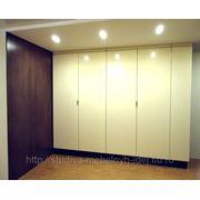 Шкафы для удобной жизни фото