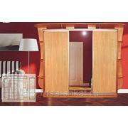 Шкафы-купе в Туле на заказ фото