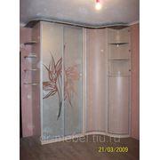 Шкаф купе с пескоструйным рисунком фото